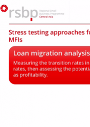 Stress testing basics for small business banks and MFIs